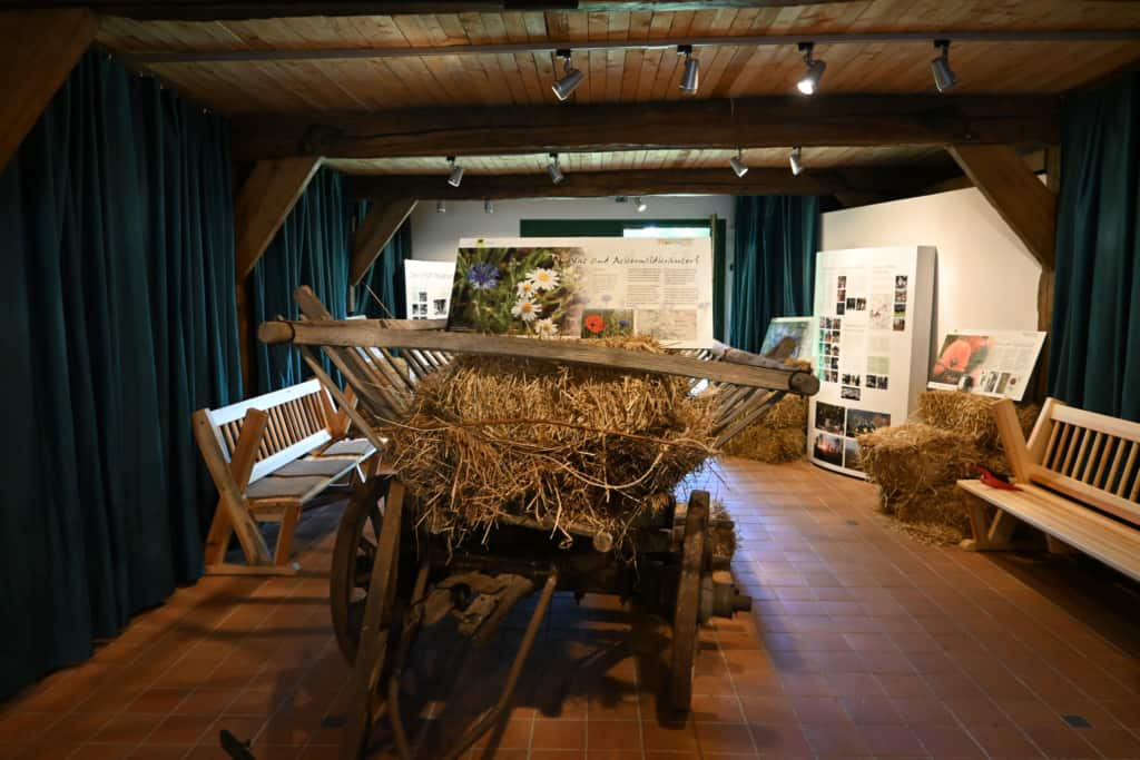 """Interior view - Exhibition: """"Of the field and its herbs"""" in the sheep shed of the VNP Heath museum Emhoff, Wilsede"""