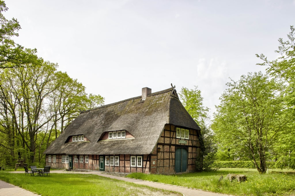 """Hans-Pforte-Haus in Niederhaverbeck with the exhibition """"Bee Worlds""""   Photo: Christian Burmester"""