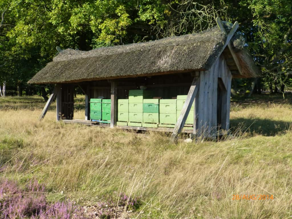 Thatched bee enclosure with bee boxes   VNP Stiftung