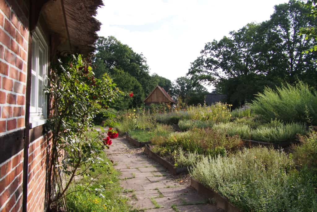 View of the herb garden at the school farm Hillmershof | VNP Children's Academy
