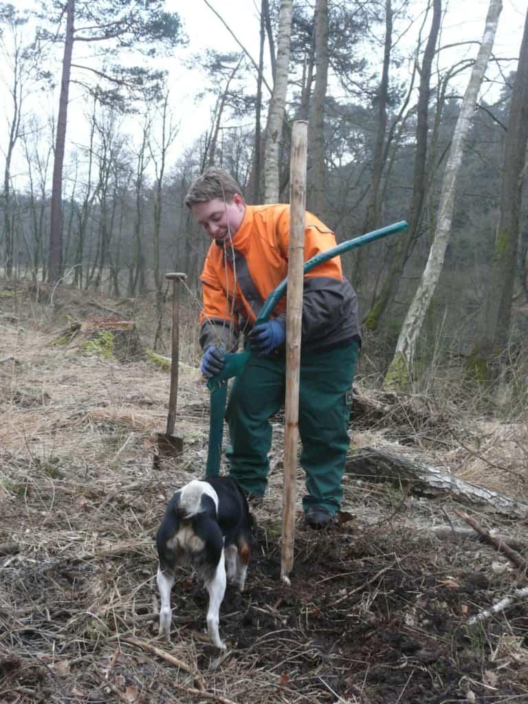 Ausbildung zum Forstwirt (m/w/d) bei der VNP Stiftung Naturschutzpark
