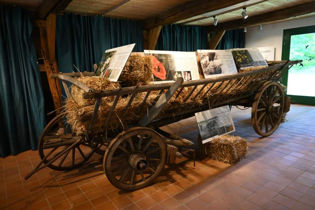 """Historischer Leiterwagen - Ausstellung: """"Vom Acker und seinen Kräutern"""" im Schafstall des VNP Heidemuseums Emhoff, Wilsede"""