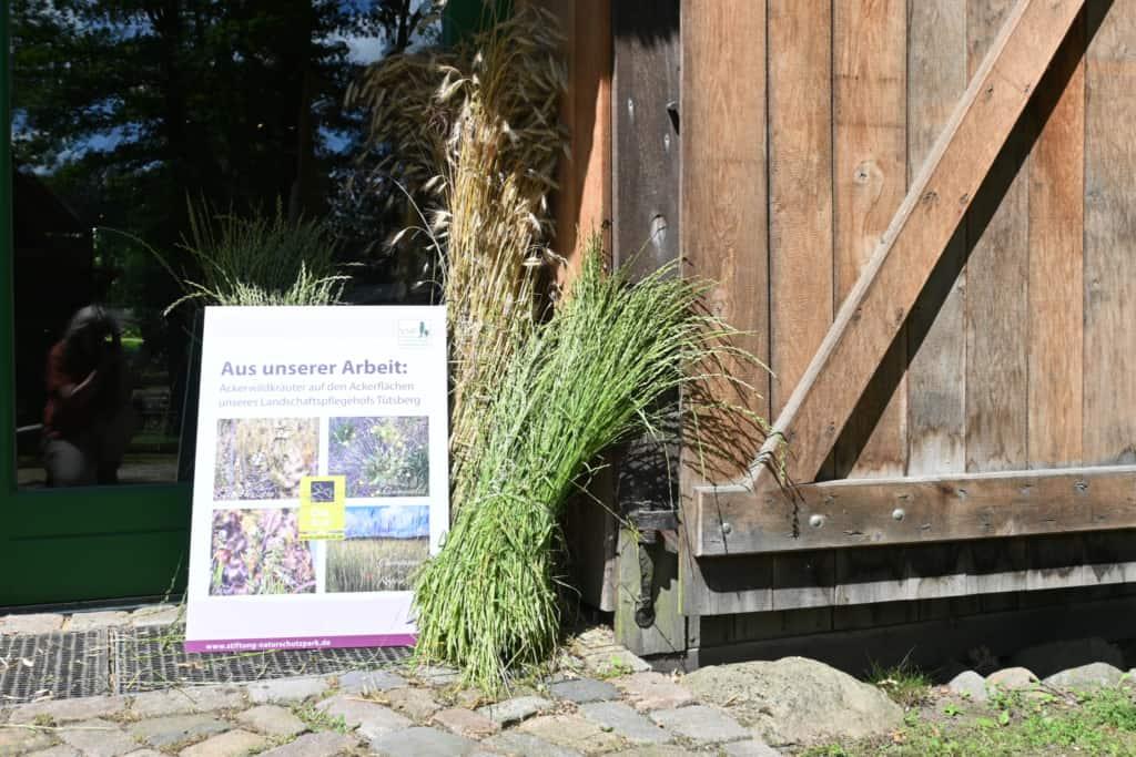 """Ausstellungsplakat - Ausstellung: """"Vom Acker und seinen Kräutern"""" im Schafstall des VNP Heidemuseums Emhoff, Wilsede"""