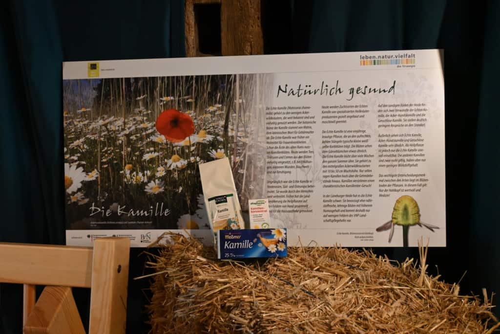 """Station Kamille - Ausstellung: """"Vom Acker und seinen Kräutern"""" im Schafstall des VNP Heidemuseums Emhoff, Wilsede"""
