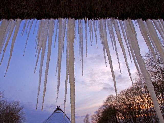 Winter: Eiszapfen am Reetdach | Foto: VNP Stiftung Naturschutzpark Lüneburger Heide