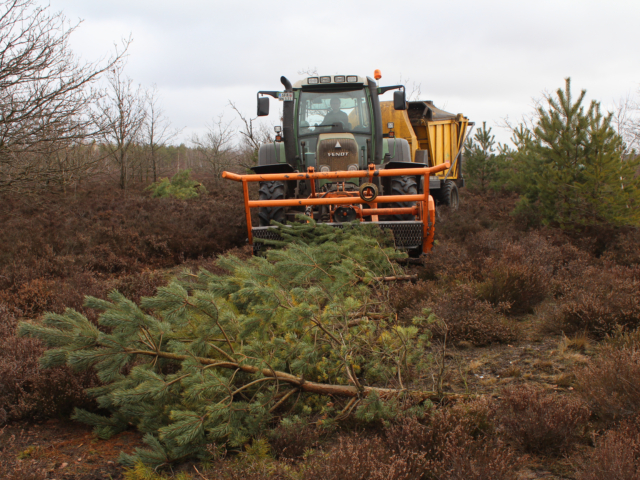 Heidepflege: Entkussselungsmaterial und Mähcontainer | Foto: VNP Stiftung Naturschutzpark Lüneburger Heide