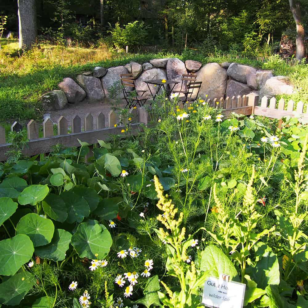 Erlebnisgarten Heidemuseum in Wilsede | VNP Stiftung