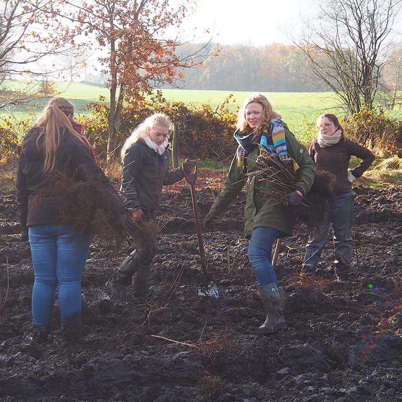 FÖJ-Mädels beim Heckepflanzen
