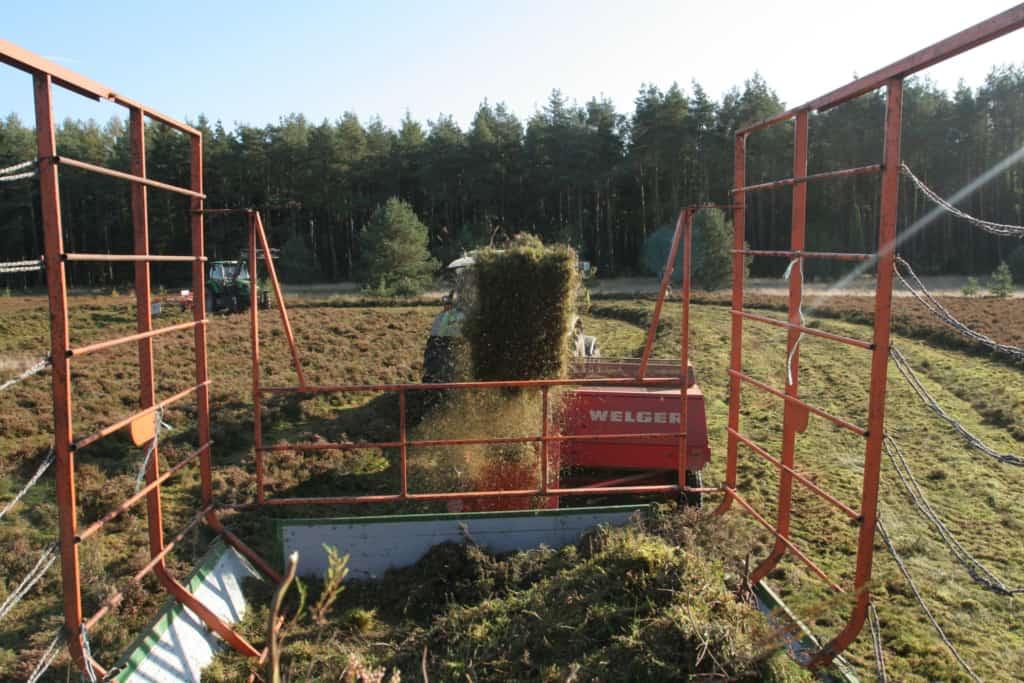 Heidemahd: Pressen der Heideballen mit einer Hochdruckpresse mit Ballenschleuder.   VNP-Stiftung