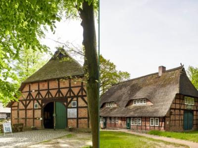 Heidemuseum und Bienenwelten öffnen ab 15.07.2021