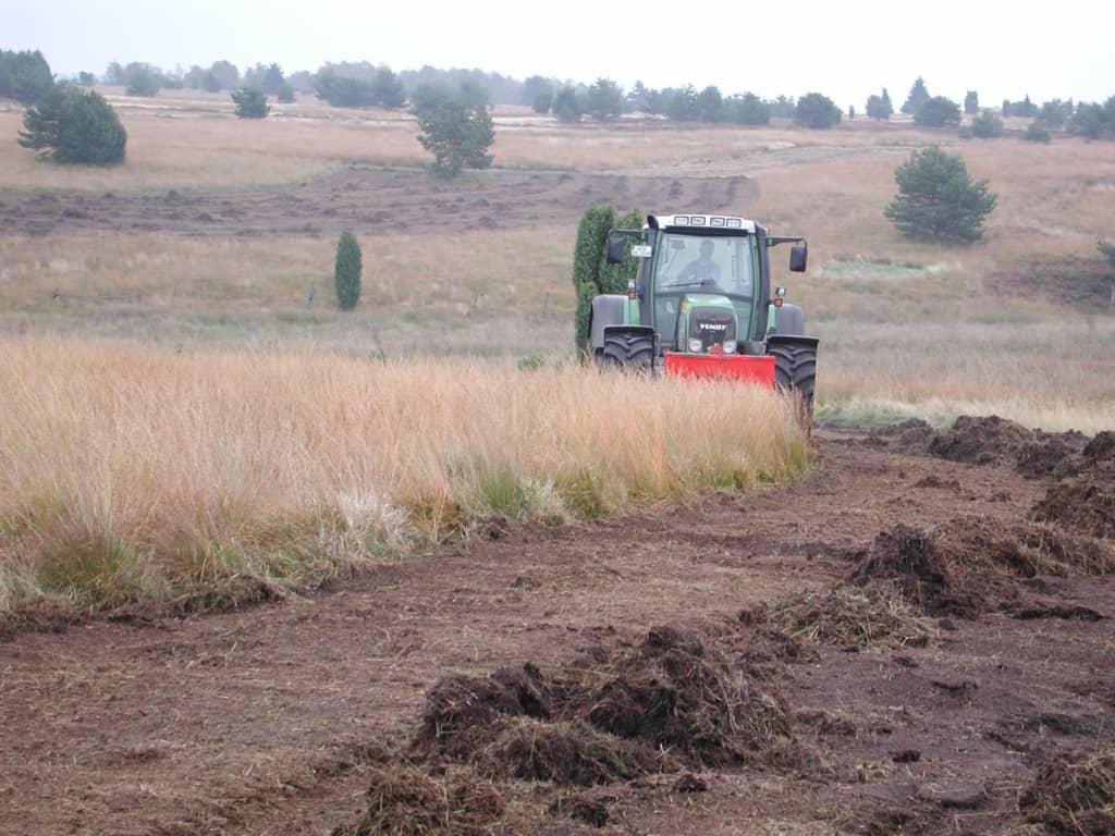 Pflege von vergrasten Heideflächen durch Schoppern | VNP Stiftung