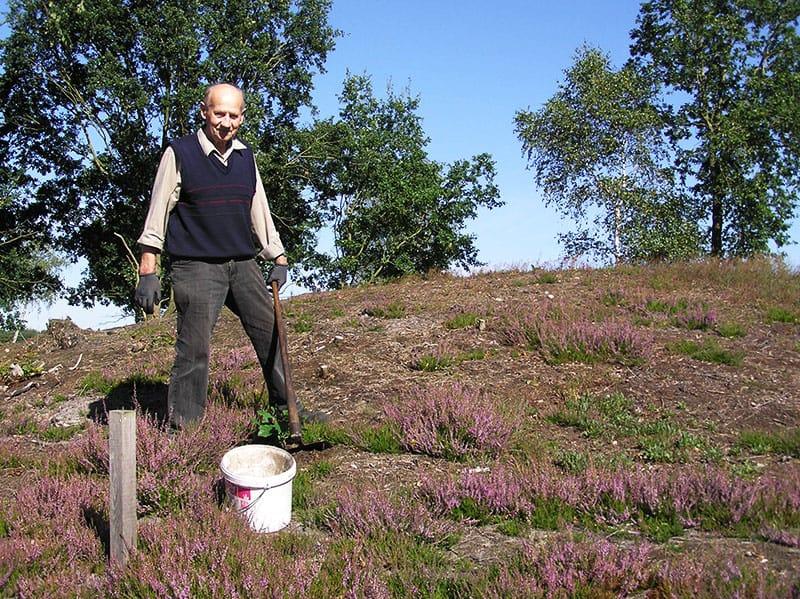 Ehrenamtliche Heidepflege: Hermann Willenbockel bringt die Behringer Hügelgräberheide zum Blühen | Foto: Lena Willenbockel