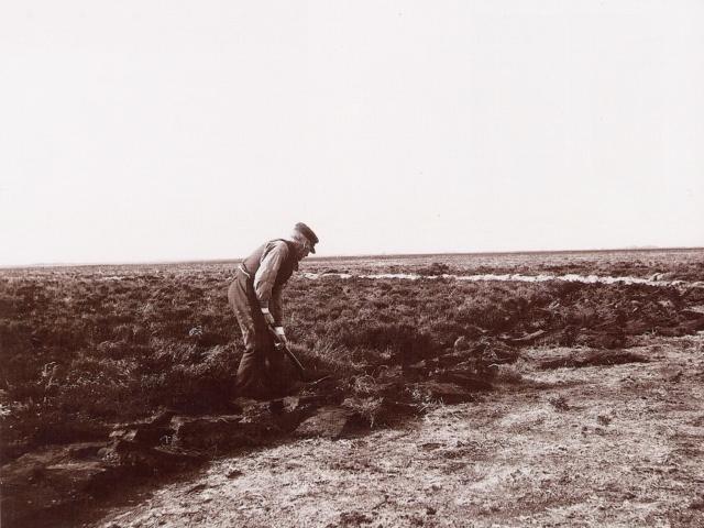 Heidepflege: Historische Aufnahme: Plaggen von Hand mit der Twigg/Plaggenhacke | Foto: VNP Stiftung Naturschutzpark Lüneburger Heide