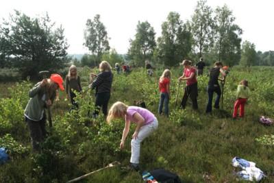 Kinder beim Entkusseln | VNP Stiftung Naturschutzpark