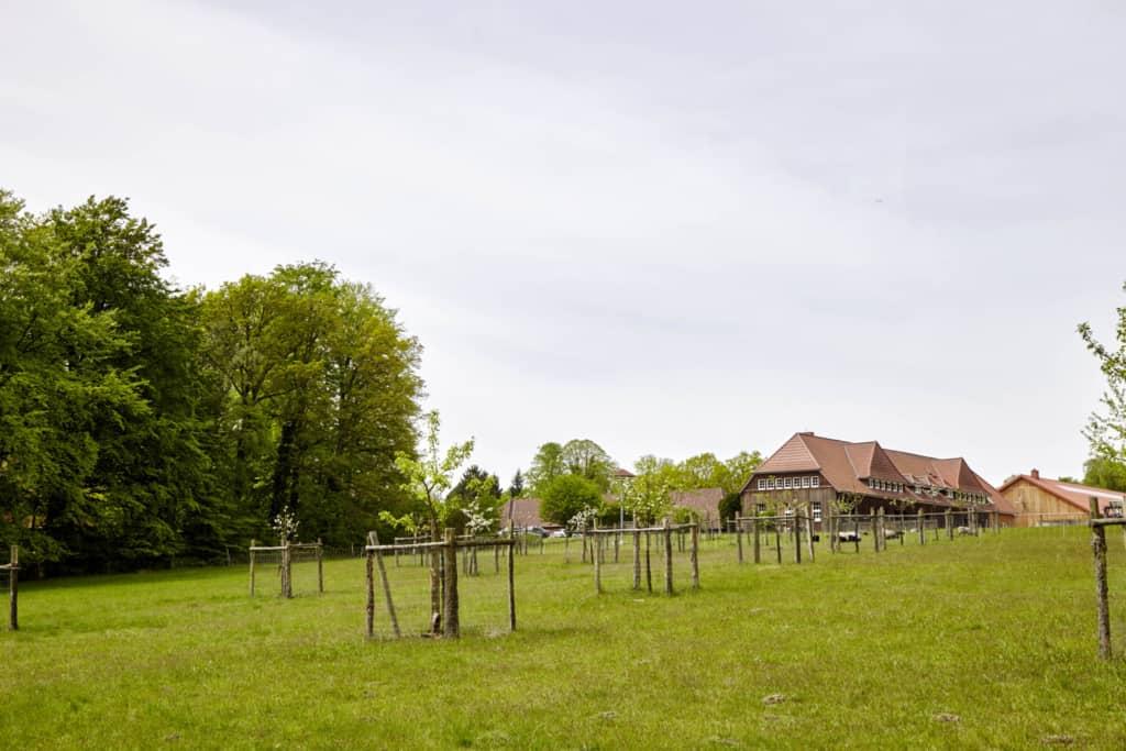 Landschaftspflegehof Hof Tütsberg | Foto: Christian Burmester