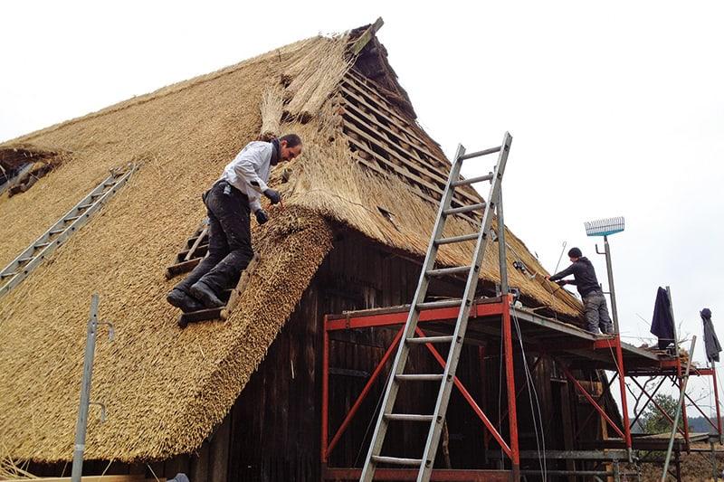 Ein neues Reetdach für den Schafstall Töps
