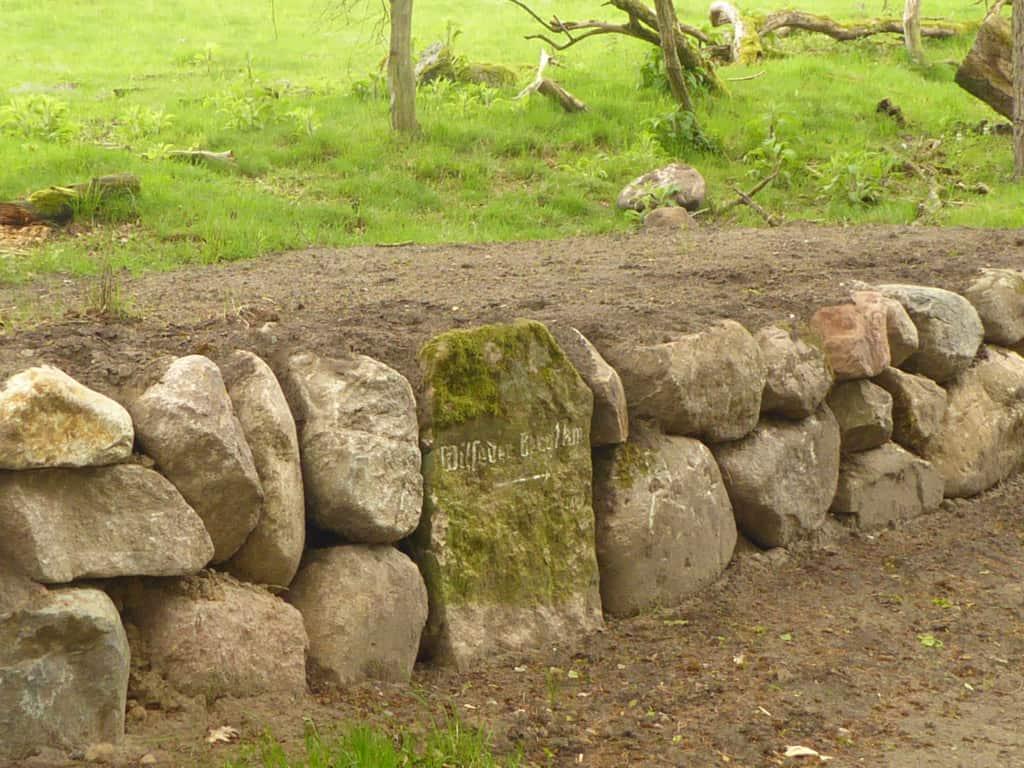 Sanierung der Steinmauer am Schlangengrund | VNP Stiftung