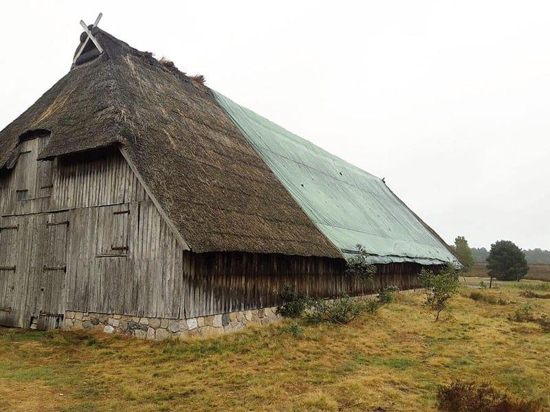 Der Schafstall in Schierhorn braucht ein neues Reetdach.