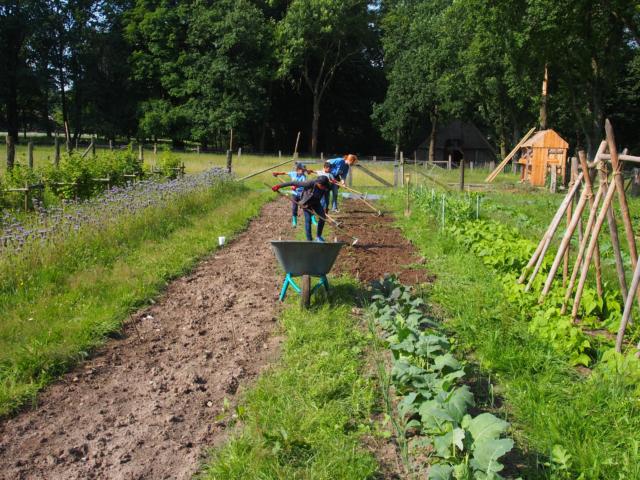 Schulbauernhof Hillmershof Wilsede: Gemeinsame Arbeit im Gemüsegarten | Foto: VNP Stiftung Naturschutzpark Lüneburger Heide