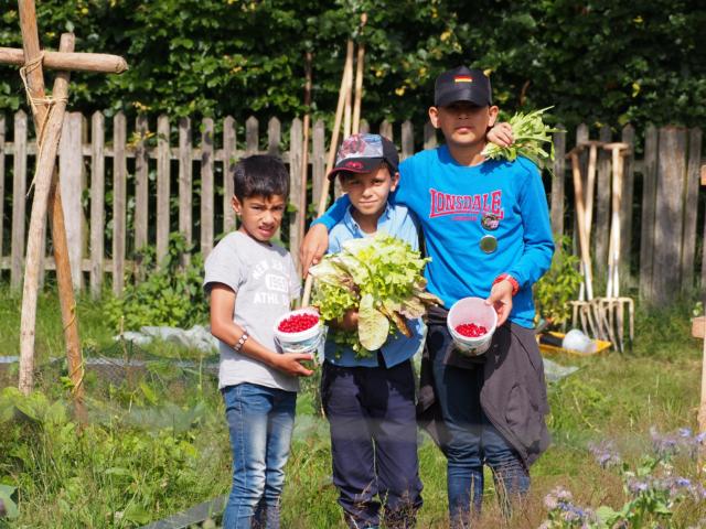 Schulbauernhof Hillmershof Wilsede: Ernte im Gemüsegarten | Foto: VNP Stiftung Naturschutzpark Lüneburger Heide