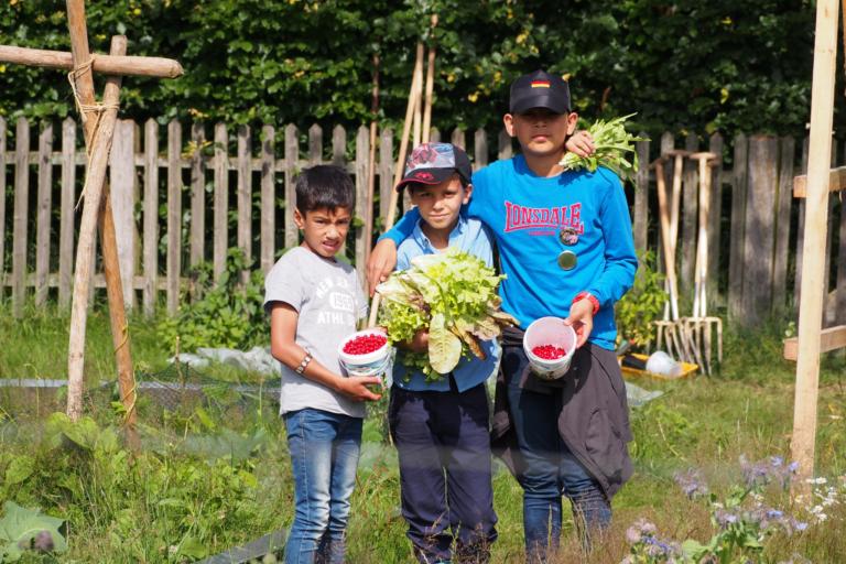 School farm Hillmershof: Harvest in the vegetable garden | VNP Children's Academy