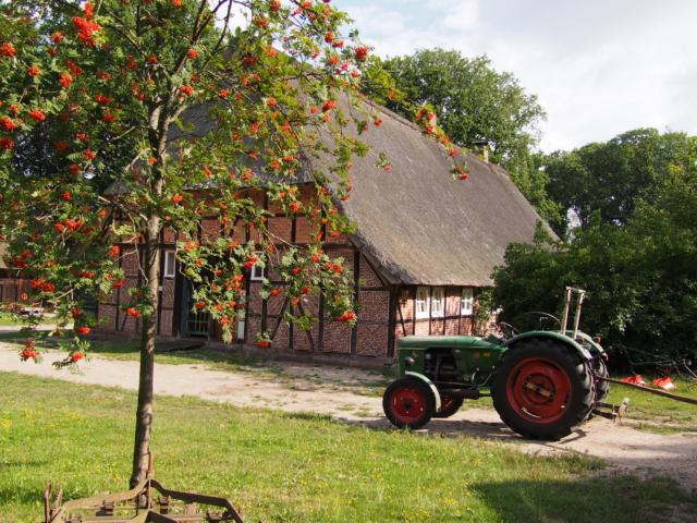 Schulbauernhof Hillmershof Wilsede: Hauptgebäude mit Oldtimertraktor | Foto: VNP Stiftung Naturschutzpark Lüneburger Heide