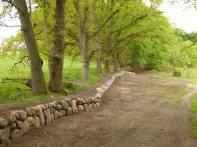 Trockensteinmauern Schlangengrund Wilsede