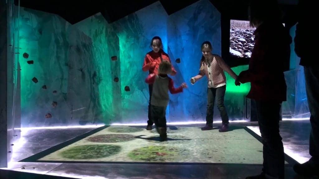 """Heide-ErlebnisZentrum Undeloh Exhibition """"Ice Age"""" in the basement"""