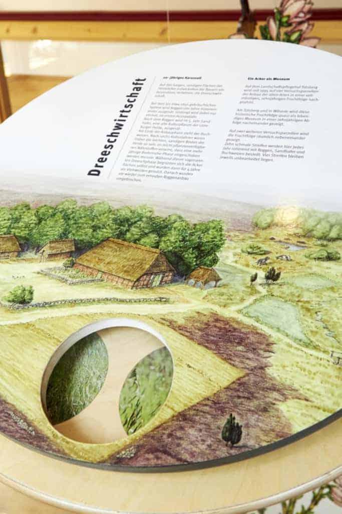 "Interactive element ""ley farming"" in the exhibition at the Heide-ErlebnisZentrum Undeloh | photo: Burmester"
