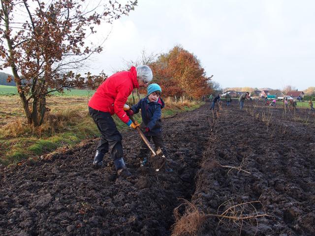 VNP Partnerschule GOBS Bispingen: Hecke pflanzen