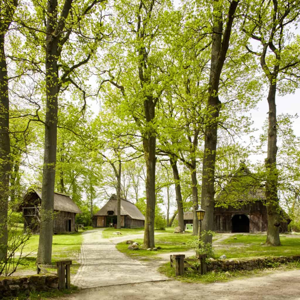 In Wilsede: Emhoff mit Ausstellungsschafstall und Naturspeicher | Foto: Christian Burmester
