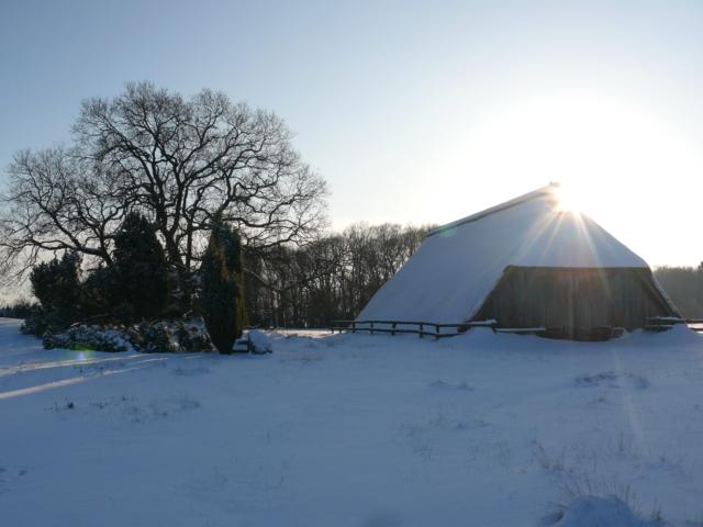 Winter: Heidschnuckenstall am Totengrund | Foto: VNP Stiftung Naturschutzpark Lüneburger Heide